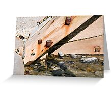 Detail of Sea defences Greeting Card