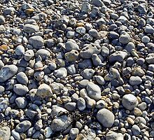 Beach Pebbles by Gary Rayner
