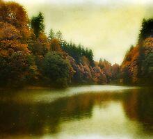 South Sound Autumn  by Lynnette Peizer