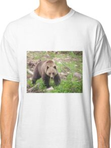 Boo the Grizzly Bear Classic T-Shirt