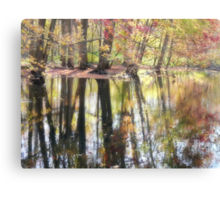 Magic on the River Canvas Print