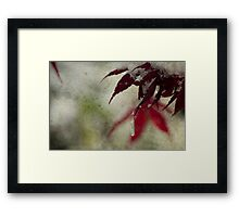 hanging in the balance... Framed Print