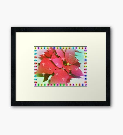 Poinsettia for Christmas Framed Print