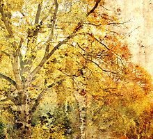 the old master - autumn... by agawasa