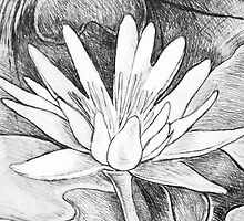 Composition With Abstracted Water Lily – October 23, 2011 by Ivana Redwine