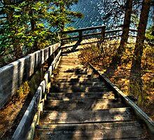 Step Down by Keri Harrish