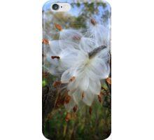 Milkweed Art iPhone Case/Skin