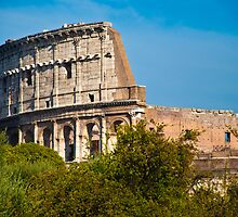Colosseum, Rome by Dean Bailey