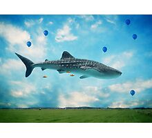 Swimming High In The Deep Sky... Photographic Print