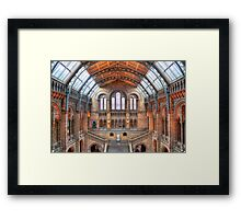 Natural History Museum - HDR Framed Print
