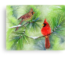 Cardinals in the Snowy Pines Canvas Print