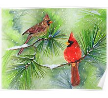 Cardinals in the Snowy Pines Poster