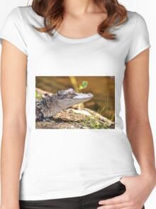 Little Gator (Alligator, mississipiensis) Women's Fitted Scoop T-Shirt