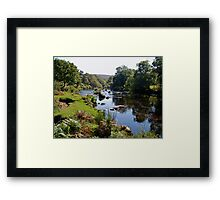 Early autumn on Dartmoor in Devon Framed Print