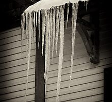 Icicles by Ryan Davison Crisp