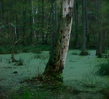 Malachite landscape  .Μολοχίτης  molochitis , mallow-green . Favorites: 2 Views: 183 . Thx! Poland . by Brown Sugar . by © Andrzej Goszcz,M.D. Ph.D