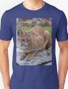 Cool Cougar T-Shirt