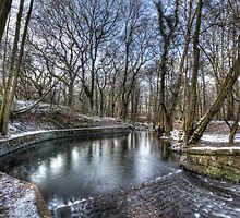 Winter - Cannop Brook by David Tinsley