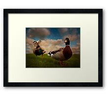 Quackers Framed Print