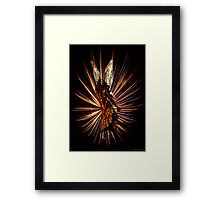 Sky Angel Framed Print