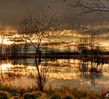 October Sunset by Michelle Burton