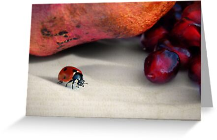 Forbidden fruit... by Yool