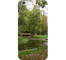 Peaceful Stream iPhone Case/Skin