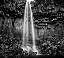 Svartifoss, Skaftafell, Iceland by Javier Leite