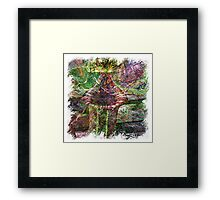 The Atlas of Dreams - Color Plate 119 Framed Print