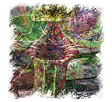 The Atlas of Dreams - Color Plate 119 Photographic Print