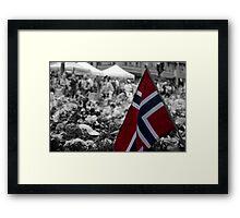 Oslo, Summer 2011 Framed Print