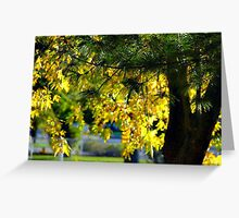 my fall yellow………………………………………and green Greeting Card
