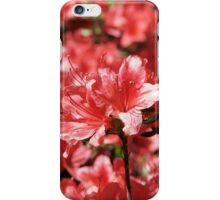 Azalea 06 iPhone Case/Skin