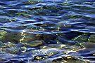 """""""Rippled Reflections"""" by Lynn Bawden"""