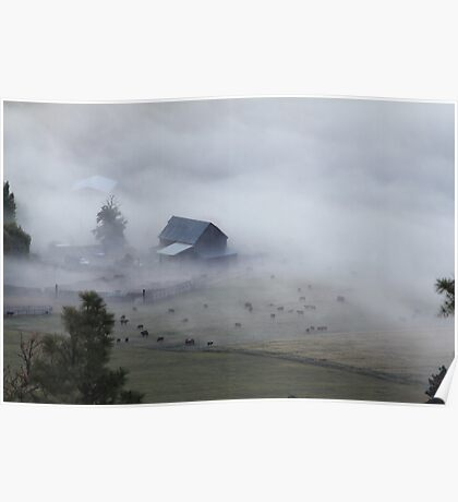 The barn, the cows, and the fog Poster