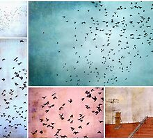 Bird Stories by Friederike Alexander