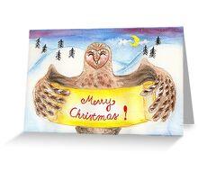 Barn Owl and Snow Greeting Card