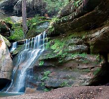 Waterfall, Cedar Falls Area, Hocking Hills State Park by Sam Warner