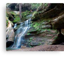 Waterfall, Cedar Falls Area, Hocking Hills State Park Canvas Print