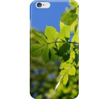 Summertime Leaves iPhone Case iPhone Case/Skin