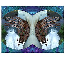 Stereoscopic Reality Photographic Print