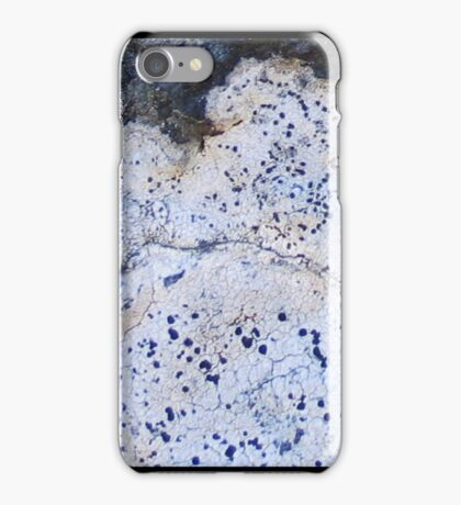 Lichens, iPhone case iPhone Case/Skin