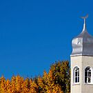 Little Mosque On The Prairie by JCBimages