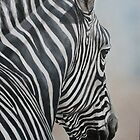 Zebra Look by Charlotte Yealey
