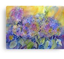 Lin's Hydrangea Canvas Print