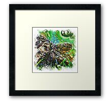 The Atlas Of Dreams - Color Plate 135 Framed Print
