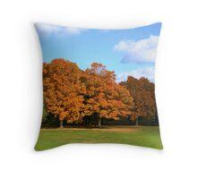 Autumn Splendour At Lake Ontario Park Throw Pillow