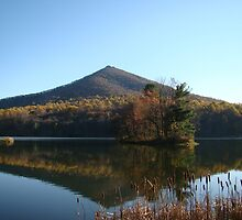 Peaks of Otter (Fall)~ by virginian