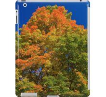 Maple Mountain iPad Case/Skin