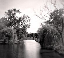 Black and White Park by jrphotography05